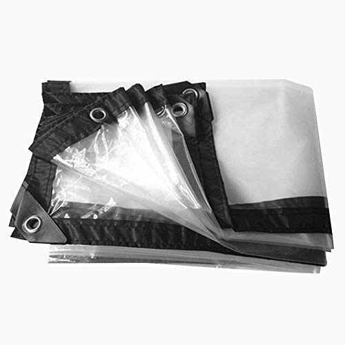 LRZLZY Hoja de Lona Impermeable Transparente Hoja de Tierra Cubiertas de Plantas Carpa de plástico láminas de Polietileno, (180g / m²) Tamaños Múltiples (Color : Transparent, Size : 2X4M)