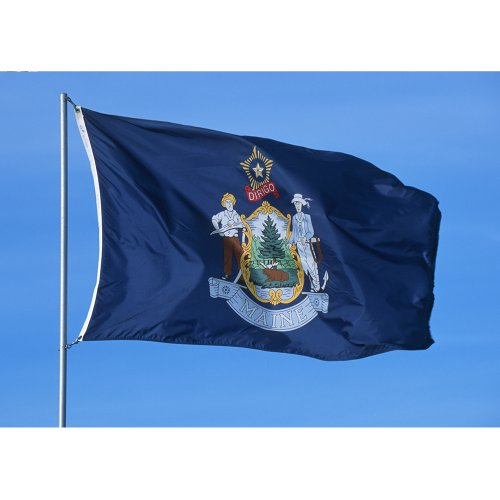 Allied Flag - 5' x 8' Outdoor Nylon Maine State Flag - Made In USA - Vivid Color and Fade Resistant - Reinforced Hem and Brass Grommets
