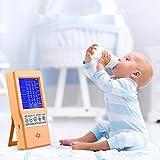 PaNt Monitoraggio qualità dell'aria per HCHO TVOC CO2 intelligente rilevatore di qualità...