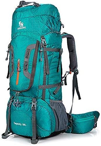 BAIYI 80L Camping Hiking Rucksack Outdoor Rucksack Nylon Ultra Light Sports Travel Bag Aluminum Support 1.65kg,Grün