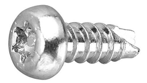 鉄/三価ホワイト (ピン・トルクス) ナベタッピング [2種B1形] M3×8 (10本)