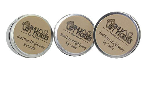 Outdoor Fragrance Favorites - 3 pack- All natural Scented Soy Candles - includes Fall Trail Ride, Apple Harvest, Fresh Cut Hay - 100 Hours Burn Time in three 6 oz. Travel Tins