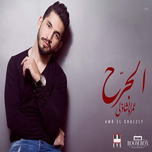 Amr el Shazly