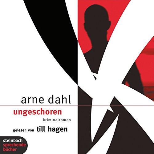 Ungeschoren audiobook cover art