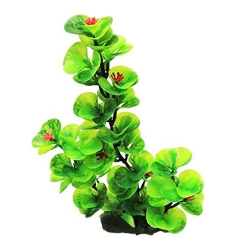 Longra Aquarium Decoratie van kunststof voor aquarium, groene planten, water, gras, sierplanten, mooie planten, ornamentalen, zaden, ontvangst, tuin, planten, decoratie voor tuin Groen