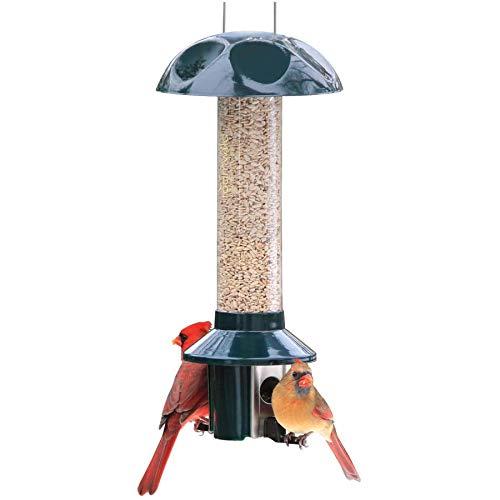 Roamwild 3lb Capacity Pest Off Bird Feeder