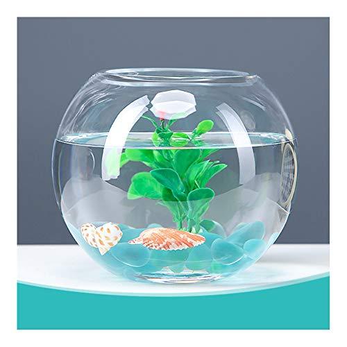XJG Kleine Glasblase Schüssel Aquarium, Home Wohnzimmer Schreibtisch Runde kleine Aquarium Schildkröte Tank, Moderne Einfachheit Home Decoration-Diameter 30cm