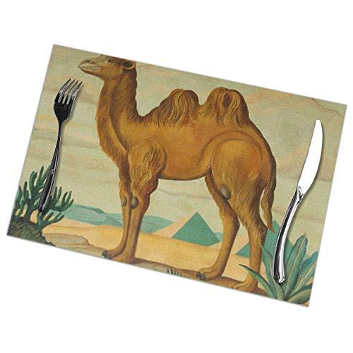 Manteles Individuales Lavables Salvamantele Individuales PVC Camello,Antideslizantes Resistente al Calor Juego de 6 para la Mesa de Comedor de Cocina 30x45cm