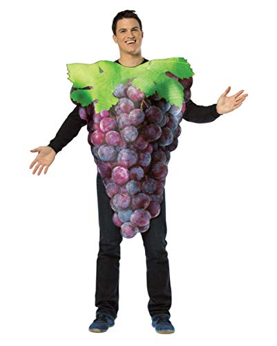 Horror-Shop Leckeres blaues Weintrauben-Rebe Kostüm für Gruppen am Faschingszug