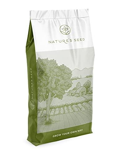 Nature's Seed Northeast Grass Seeds Blend, 2000 sq. ft.