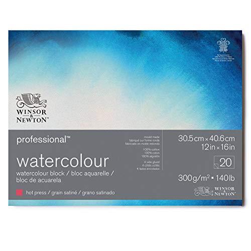 Winsor & Newton Professional Watercolour Blocco Grana Satinata 300 g - 30.5 x 40.6 cm - 20 Fogli