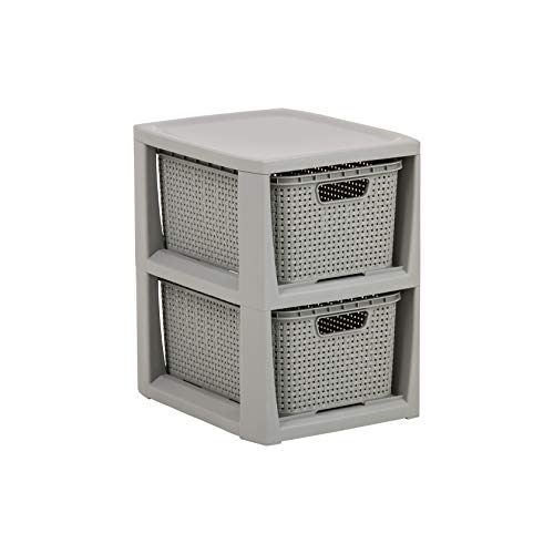BranQ - Home essential Regal in Rattan Design, BPA-freie Kunststoff PP, Hellgrau, 29,5 x 24 x 32,8 cm, 2 Körben