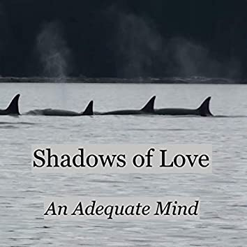 The Shadows of Love