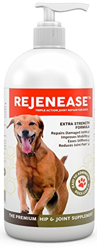 Premium Liquid Glucosamine Hip and Joint Supplement for Dogs - Fast Natural Arthritis Pain Relief and Better Mobility - Extra Strength with Chondroitin MSM and Hyaluronic Acid. Made in USA 16oz.