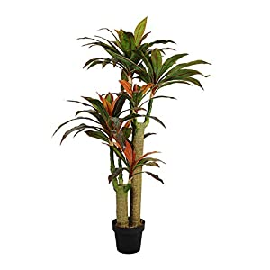 AMERIQUE Gorgeous & Dense 5′ Tropical Dracaena Marginata Tree Artificial Silk Plant with UV Protection, with Nursery Plastic Pot, Feel Real Technology, Super Quality, 5 Feet, Green and Orange