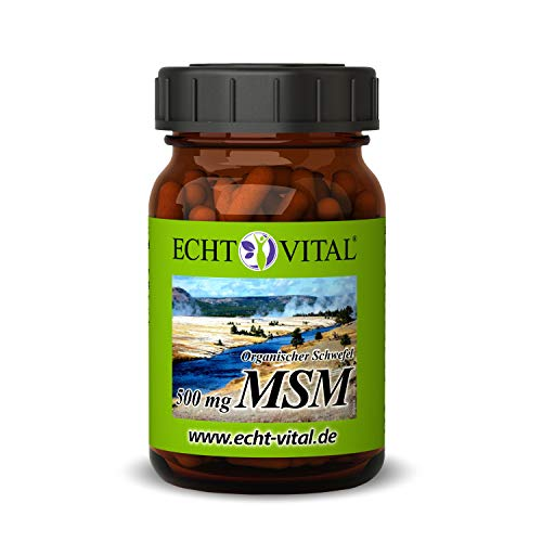 ECHT VITAL MSM 500 mg pro Kapsel (Methylsulfonylmethan) Reinheitsgrad 99,9% - 1 Glas mit 120 Kapseln