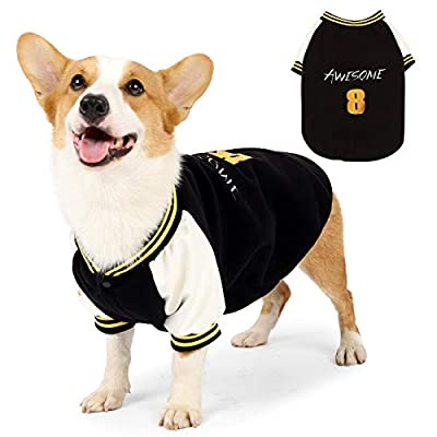Dliomimt Pet Baseball Jacket Clothes Fashionable Comfy For Puppy Medium Large Dog Warm Costume Autumn Winter Outfit Apparel Coat (Medium, Black)