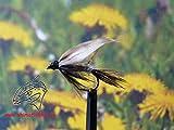 Nassfliegen ' March Brown' 3er Set, Hakengröße 14