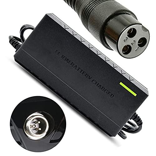 joyvio Cargador de batería de Scooter eléctrico de 24 V para Razor E100 E200 E200S E175 E300 E300S E125 E150 E500 E500S PR200 E225S E325S MX350 MX400 ZR350 Cable de alimentación