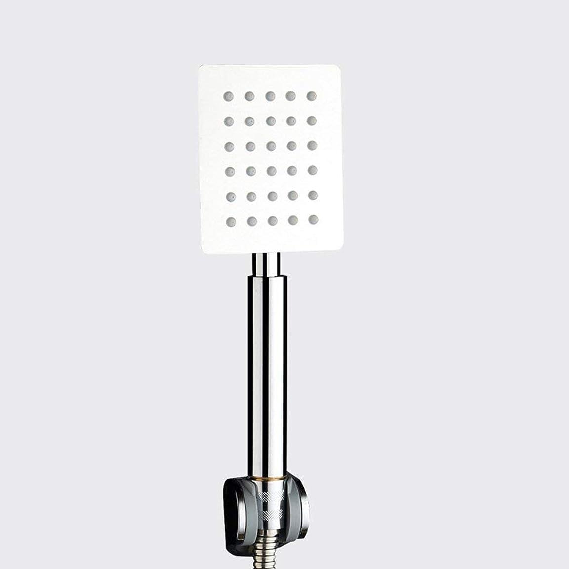 リッチ悪行知性実用的なハンドシャワー 304ステンレス鋼浴室手のシャワーを浴びるシャワーヘッドシャワーヘッドシャワーヘッドシャワーヘッドシャワーヘッドシャワーヘッドシャワーヘッドシャワーヘッド (Color : 2)
