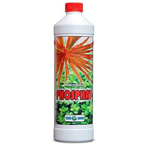 Makro Basic Phosphat 1L I Wasserpflanzen-Dünger zur optimalen Versorgung von Wasserpflanzen im Aquarium