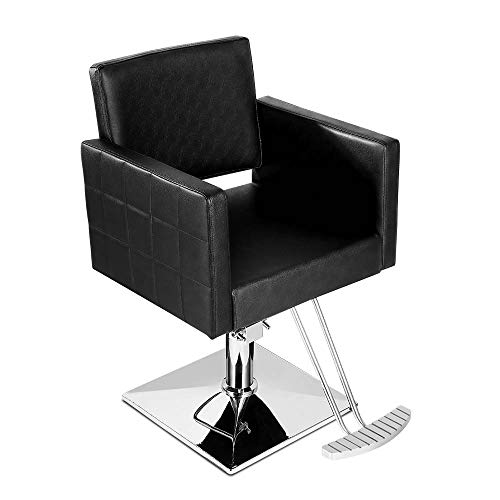 Paddie Salon Chair for Hair Stylist, Hydraulic Barber Chair for Styling Beauty Spa Equipment (Black)