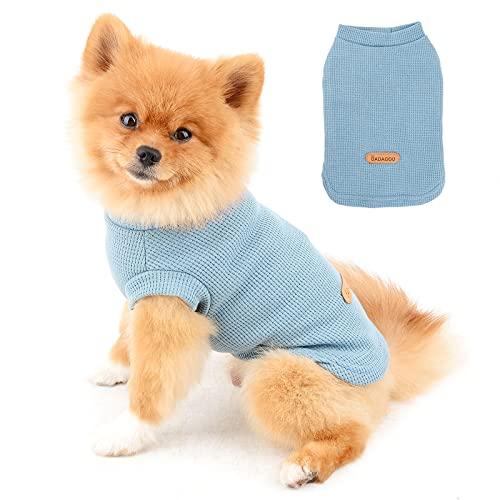 PAIDEFUL Camisas para Perros Pequeños Medianos Gatos Color Sólido Suave de Algodón Chaleco sin Mangas Transpirable Cachorro Camisetas Yorkie Chihuahua Ropa de Verano para Mascotas Exterior Azul S