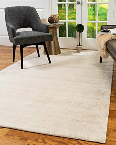 Natural Area Rugs Accent Tabitha Viscose Contemporary Rug (5' x 8') Pearl
