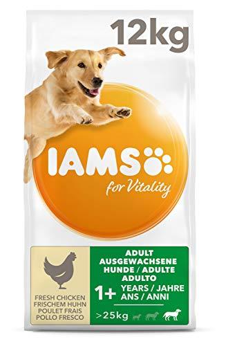 IAMS for Vitality Adult Hundefutter für große Rassen mit frischem Huhn, 12kg