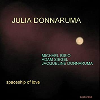 Spaceship of Love
