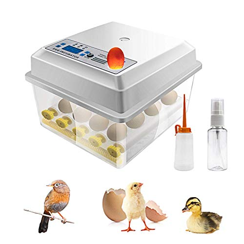 Safego Egg Incubator for Hatching Eggs, Digital Mini Incubator with Automatic Turner and Egg Candler Tester for Hatching Chicken Duck Quail Bird Eggs (16 Eggs) (16 Eggs-Upgrade)