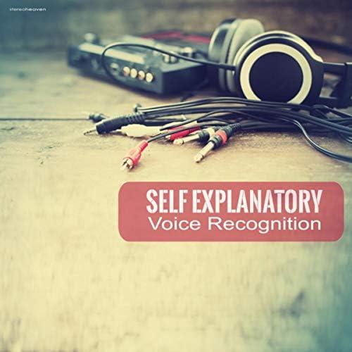 Self Explanatory