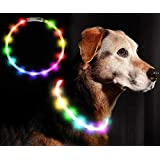 LED光る首輪, Darhoo 首輪 犬 猫 光る LED おしゃれ ハーネス ライト ペット 夜間 安全性 夜道 散歩 リード USB充電 防水 小型犬 中型犬 大型犬に対応 (虹色)