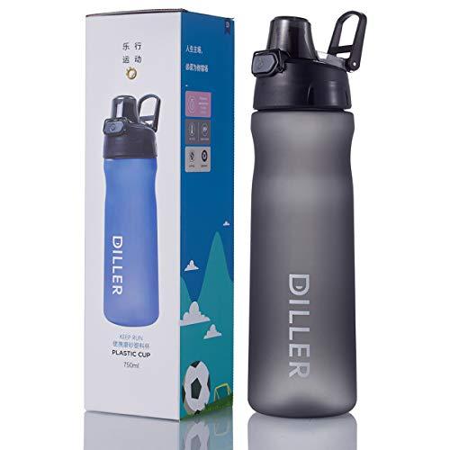 HGDGears Botella de Agua Deportes - Sin BPA & Prueba de Fugas 500ml/700ml/750ml, Botellas Agua con Pincel de Botella para Niños, Gimnasio, Yoga, Oficina, Senderismo, Viajes (750ml, Gris)