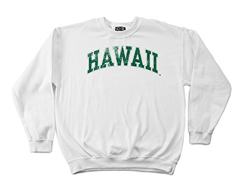 Hawaii Rainbow Warriors 50/50 Blended 8-Ounce Vintage Arch Crewneck Sweatshirt, Small, White
