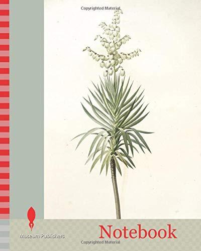 Notebook: Yucca aloifolia, Yucca feuilles entieres, Palm Lily or Spanish Dagger., Redouté, Pierre Joseph, 1759-1840, les liliacees, 1802 - 1816