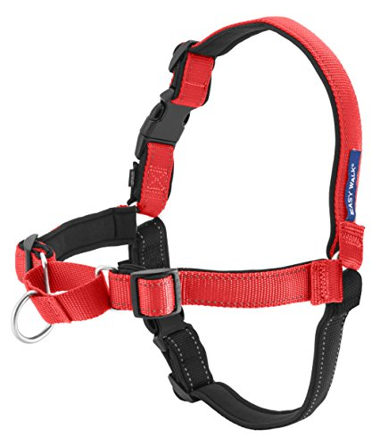 Purpose of Easy Walk Harness