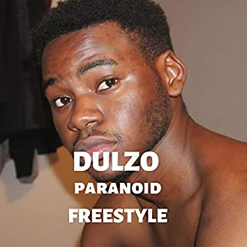 Paranoid Freestyle
