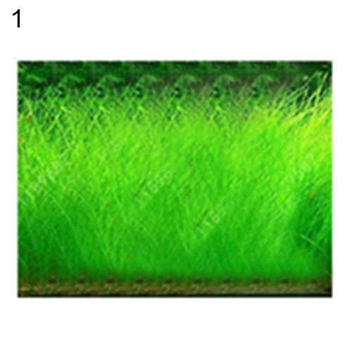 Samen, 100 Stück Aquarium Wasser Grassamen Aquarium Wasserpflanze Bonsai Landschaft Dekor - 100 Stück große haarige Samen