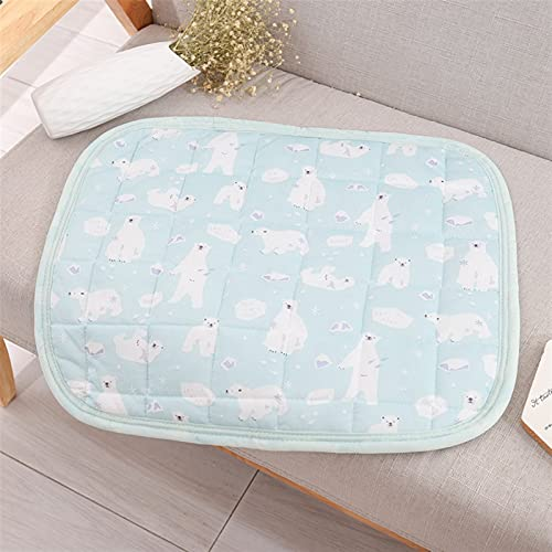 FENGNANMY Hundmattor andas is silke hundmatta sommar bekväm mjuk husdjurssäng madrass för kennel utomhus bilstolar soffor golv (färg: Grön, storlek: S)