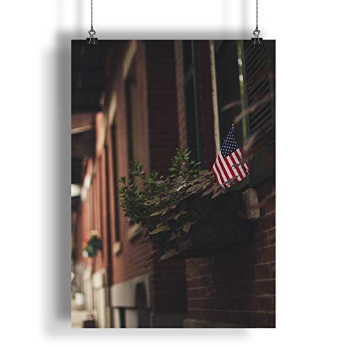 INNOGLEN Kleine USA-Flagge in einem Blumen-Topf A0 A1 A2 A3 A4 Satin Foto Plakat a1780h