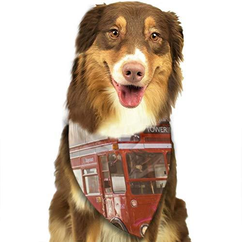 N/B Bbgsw Bus in de buurt van gebouw aangepaste hond hoofddoek felgekleurde sjaals schattige driehoek slabbetjes accessoires voor huisdier honden
