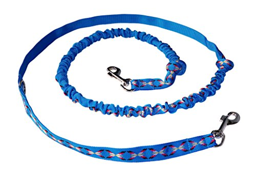 Northern Howl Hunde Zugleine Joggingleine für Canicross Joggen Dogtrekking blau