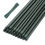 CEED4U 25 Packs 5 Feet Steel Garden Stakes Plant Stake Plant Cage Supports with 100 Pcs Twist Ties, Plastic Coated Plant Sticks for Tomato Plants Trees Cucumber Fences Beans Strawberry Flowers