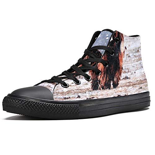 LORVIES Bison - Zapatillas deportivas para hombre, (multicolor), 41 EU
