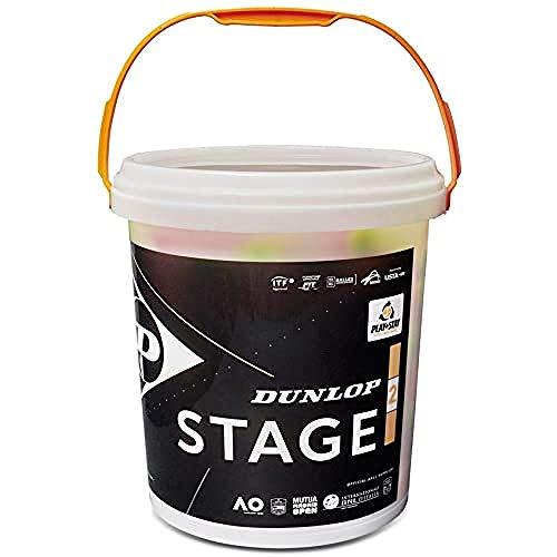 Dunlop 601343 Palla da Tennis Stage 2, Orange, 60 Buckety, Multicolore