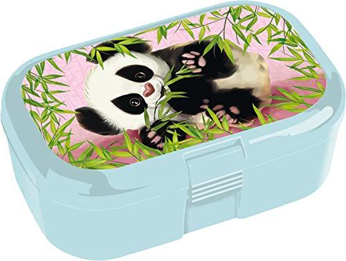Lunchbox * Panda * für Kinder von Lutz Mauder | 10807 | Perfekt für Dschungel-Fans | Snackbox in Größe: 10,5 x 4,2 x 6,6cm | Brotzeitbox Brotzeit Schule Grundschule Einschulung