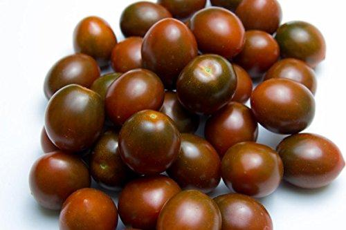 Semences certifiées BIO Noir Tomate cerise ~ 40 graines Facile Minis Violet