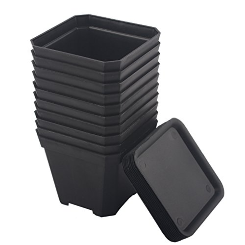 BangQiao 3.90 Inch Plastic Flower Pots for Plants,Cutting,Seedlings, Pack of 10 (Black)