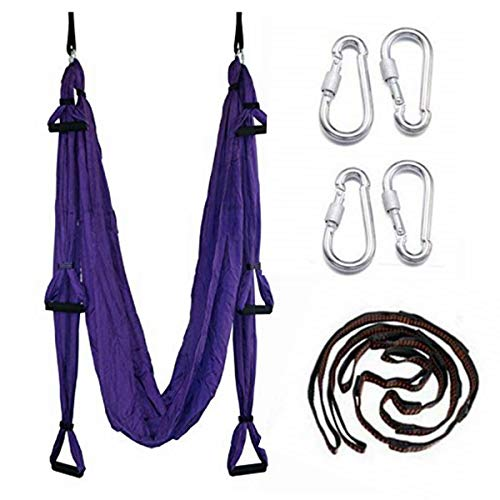 EverKing Aerial Yoga Swing - Ultra Strong Antigravity Yoga Hammock/Sling/Inversion Tool for Air Yoga Inversion Exercises (Violet)